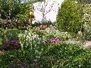 usługi brukarskie, ogrodnicze-zimą odśnieżanie, dolnośląskie