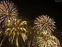 Sylwester Amsterdam 2011/2012 - 500 55 66 00 !! , Chorzów, śląskie