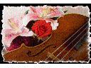 skrzypce- oprawa muzyczna (ślub, bankiet), białystok, podlaskie