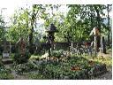 Sprzątanie grobów, opieka nad grobami, renowacja, Katowice, Jaworzno, Chrzanów, Kraków,, śląskie