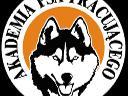 Pozytywne,szkolenie,psów , Poznań, wielkopolskie