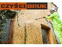 Czyszczenie ciśnieniowe kostki brukowej, elewacji, dachów, podjazdów, Gdynia, pomorskie