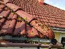 Mycie, malowanie dachów, elewacji, konserwacje, prace wysokościowe, Gorzów Wielkopolski, lubuskie