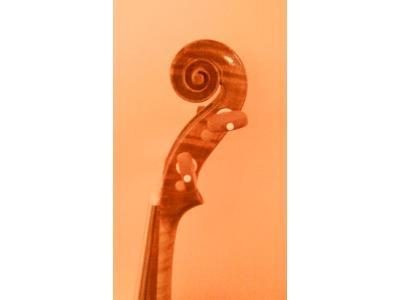 profil główki - skrzypce barokowe - kliknij, aby powiększyć