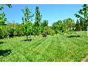 Usługi ogrodnicze ogrody Wisła Ustroń Brenna Skoczów Górki