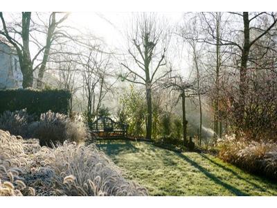 usługi ogrodnicze - kliknij, aby powiększyć
