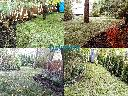 Ogród, system nawadniania, drenaż, woda deszczowa, odwodnienie, , Warszawa, mazowieckie