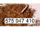 Tani tytoń papierosowy, tytoń do palenia tanio www.Tyton-Hurt.pl, cała Polska