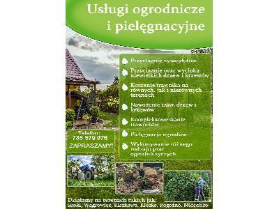 Usługi ogrodnicze, pielęgnacja, koszenie trawy, przycinanie drzew...